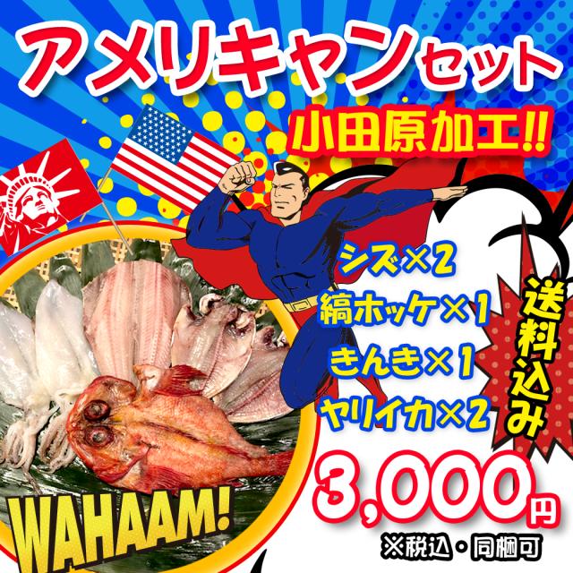 【送料込み/同梱可】アメリキャンセット!(小田原加工)