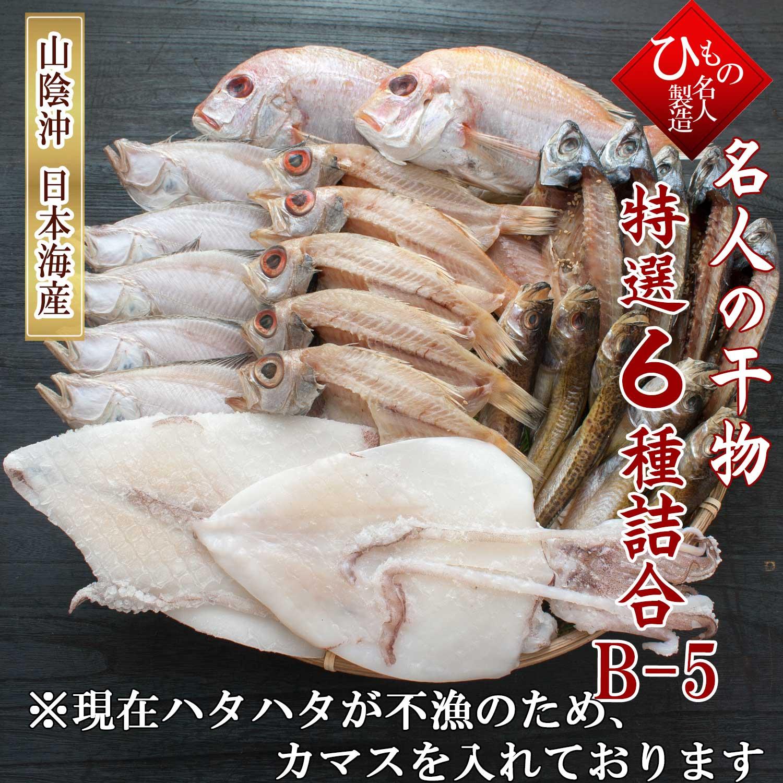 名人の干物 6種 B5