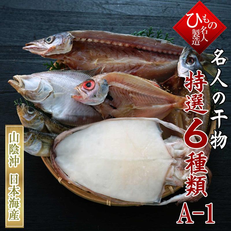 6種A-1