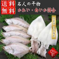 干物(ひもの)詰合 白いか・えてかれい 2種詰合-7尾【送料無料】