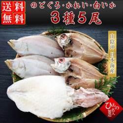 名人の干物 3種(のどぐろ・えてかれい・白いか)5尾詰合【送料無料】
