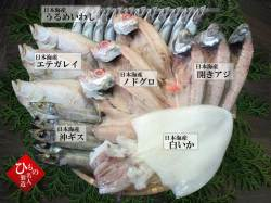 干物(ひもの)父の日特別セット-12尾詰合 【送料無料】※東北・北海道・沖縄は送料520円をお願いします。
