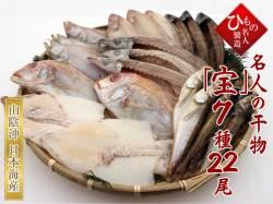 干物(ひもの) 7種(連子鯛入り)詰合-宝22尾 【送料無料】