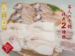 干物2種(のどぐろ中、白いか)詰合-B 【送料無料】