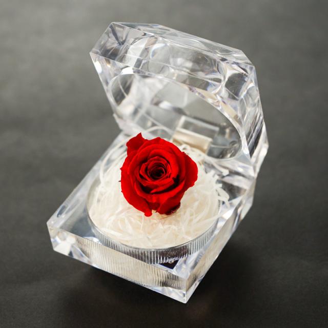 干物セットに入れる プリザードフラワー 赤色 小