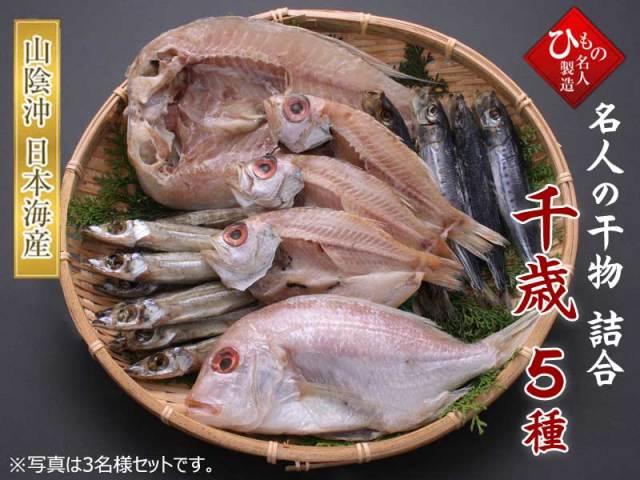 千歳5種-3B_甘鯛