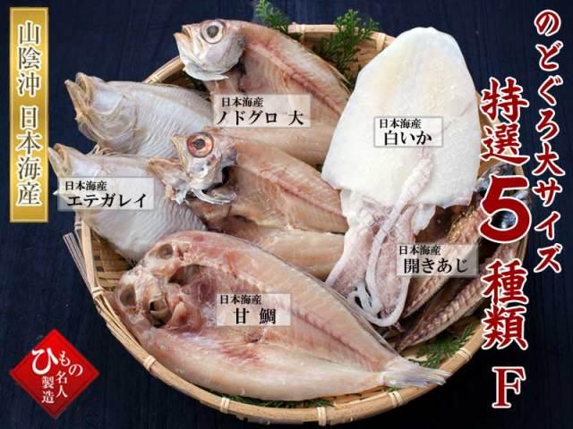 干物(ひもの)詰合 5種詰合-F(のどぐろ大・甘鯛)入り ※現在、【甘鯛】が品薄のため、【連子鯛・ユメカサゴなど】を入れる場合がございます。【送料無料】 ※北海道・沖縄・東北は送料520円をお願いします。