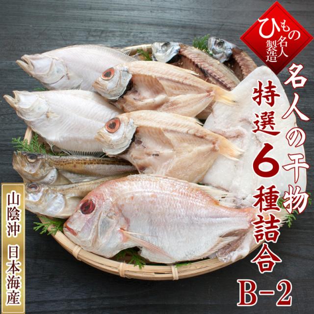干物(ひもの)詰合 名人の干物 祝-10尾 詰め合わせ 【送料無料】北海道・東北・沖縄は送料520円をお願いします。