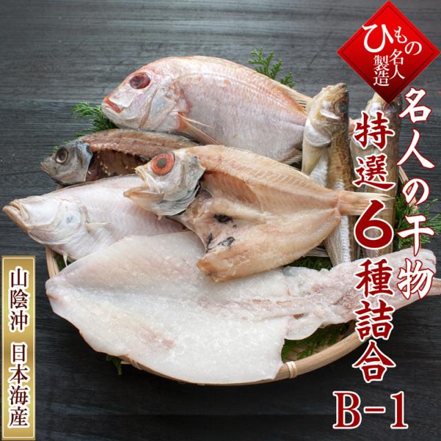 名人の干物 6種 B1