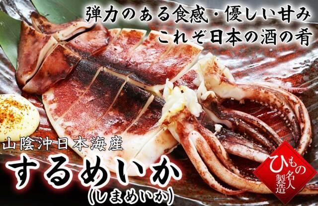 干物(単品)するめいか(しまめいか) 山陰沖日本海産(鳥取県・島根県産)