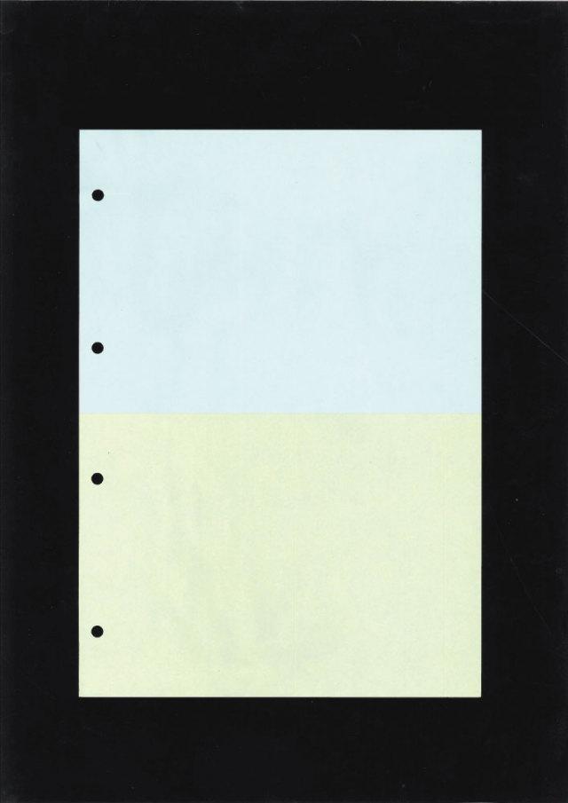 9ケース限定  A4カットシート 2分割 カラー 4穴 (1000枚) ≪送料無料≫