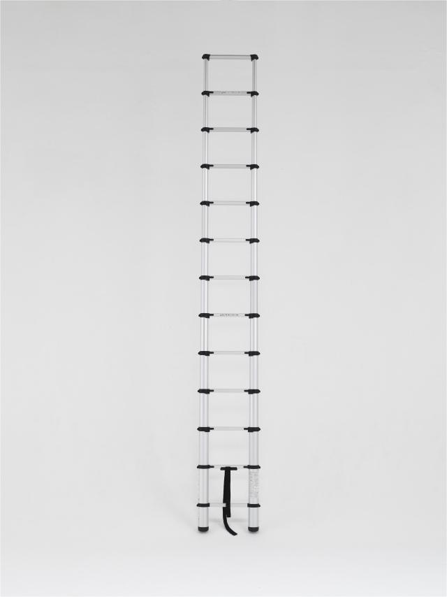 アルインコ(ALINCO)  伸縮式はしご MW-39A