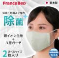 キュリエスAG 除菌立体マスク 2枚セット