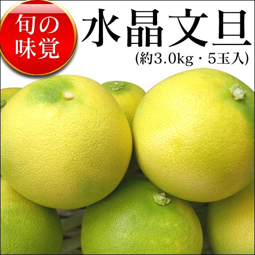 高知県産 水晶文旦 (3kg・5玉)