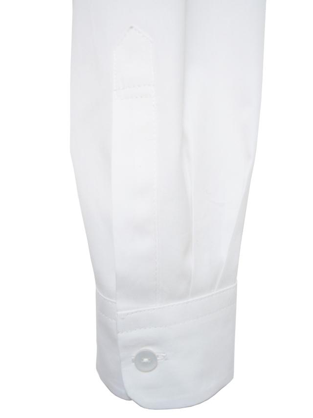 シャツ、プリント、長袖、ブロード、綿