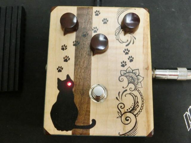 canal-cat-newcat-5