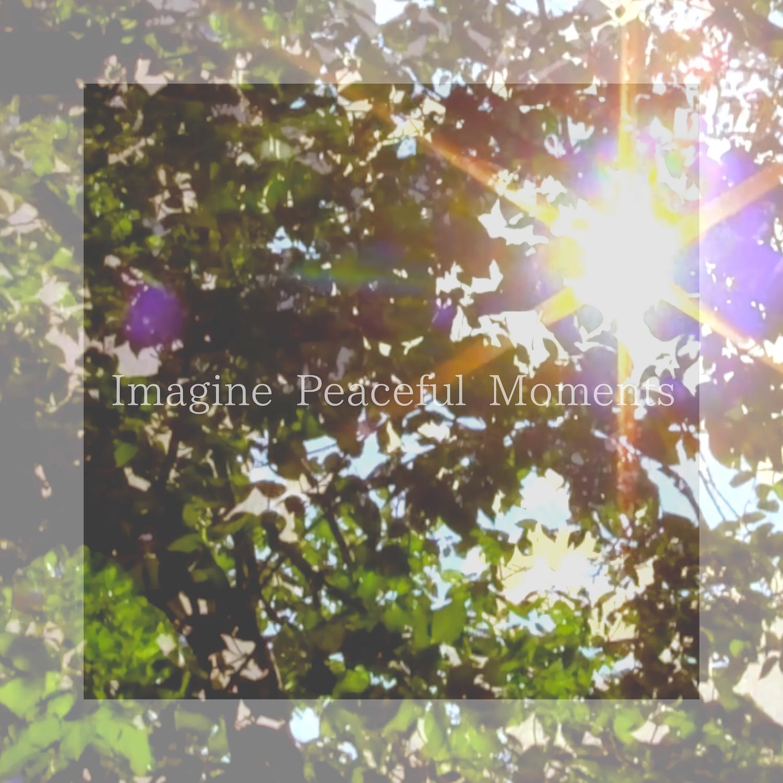 Imagine Peaceful Moments/音・音[2667]