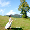 Collection 朱鷺たたら 篠笛の世界[3682]
