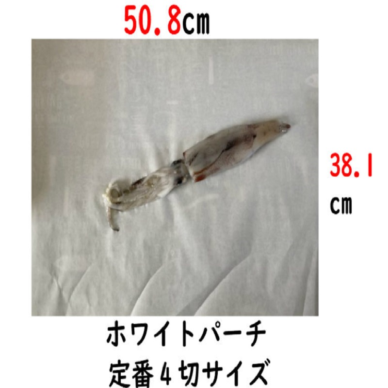 イカの包装紙ホワイトパーチです
