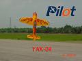 Pilot社 YAK54 180inch (4.58m 55%) エンジン機 送料込・関税込・運送保険込