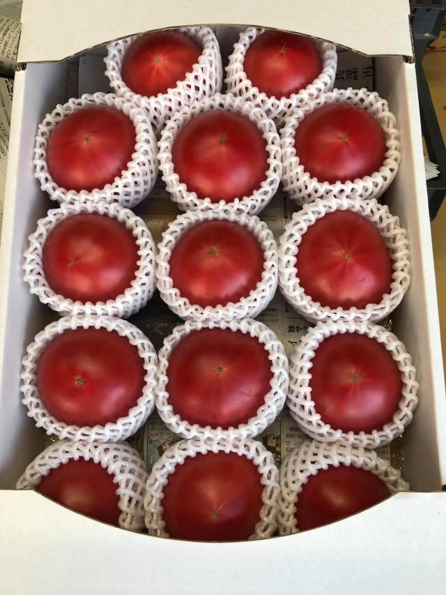 小沼農園 完熟トマト 約3kg~4kg(14~26玉)