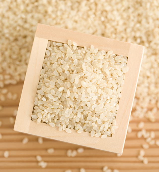 北海道川添農園 農薬節減米 ななつぼし 10kg