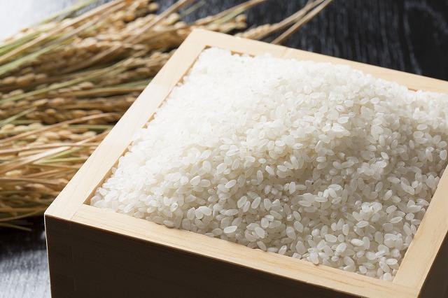 北海道川添農園 農薬節減米 ゆめぴりか 10kg