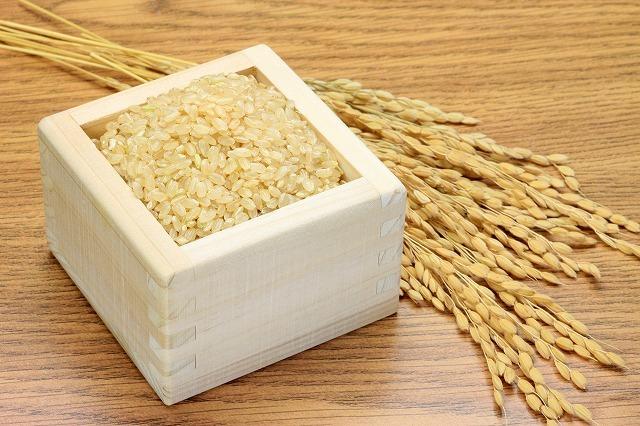 北海道川添農園 農薬節減米 おぼろづき 10kg
