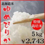 令和元年産特別栽培米ゆめぴりか5kg
