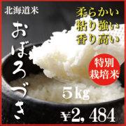 特別栽培米おぼろづき5kg 29年産