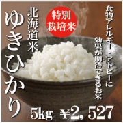 特別栽培米ゆきひかり5kg 29年産