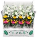 供養 花 造花