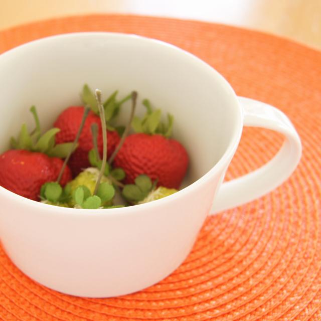【和食器通販ショップ 藍土な休日】波佐見焼 康創窯 藍土 オリジナル スープカップ 白磁 白い器