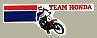 Vintage Team Hondaロゴ