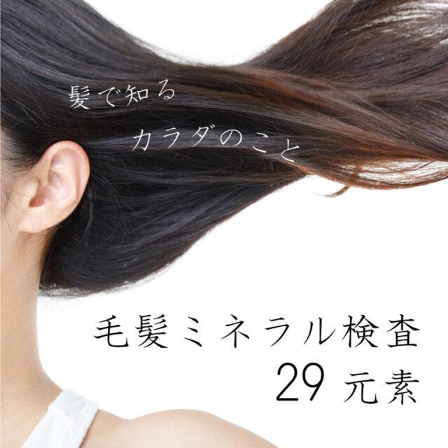 毛髪ミネラル検査29元素検査キット(大人、子ども兼用)【送料無料】