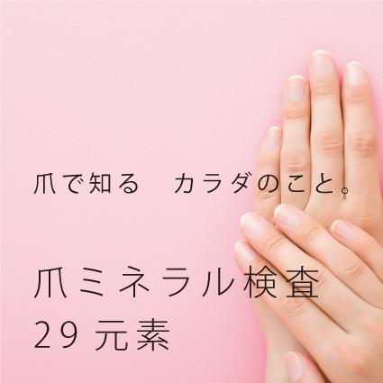 爪ミネラル検査29元素検査キット