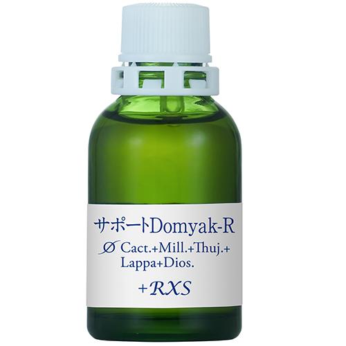 サポートφDomyak-R