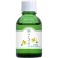 MTハイペリカムJ(小) ホメオパシージャパン正規販売店レメディ.com