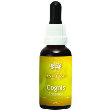 コグニス Cognis 認知・集中力 オーストラリアンブッシュフラワーエッセンス