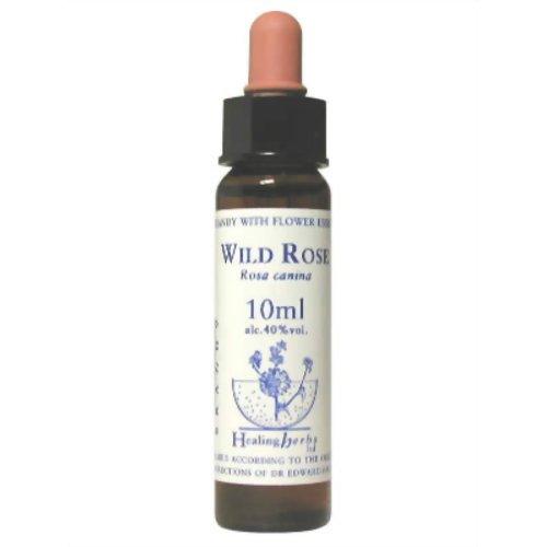 ワイルドローズ Wild Rose ヒーリングハーブ バッチフラワーエッセンス