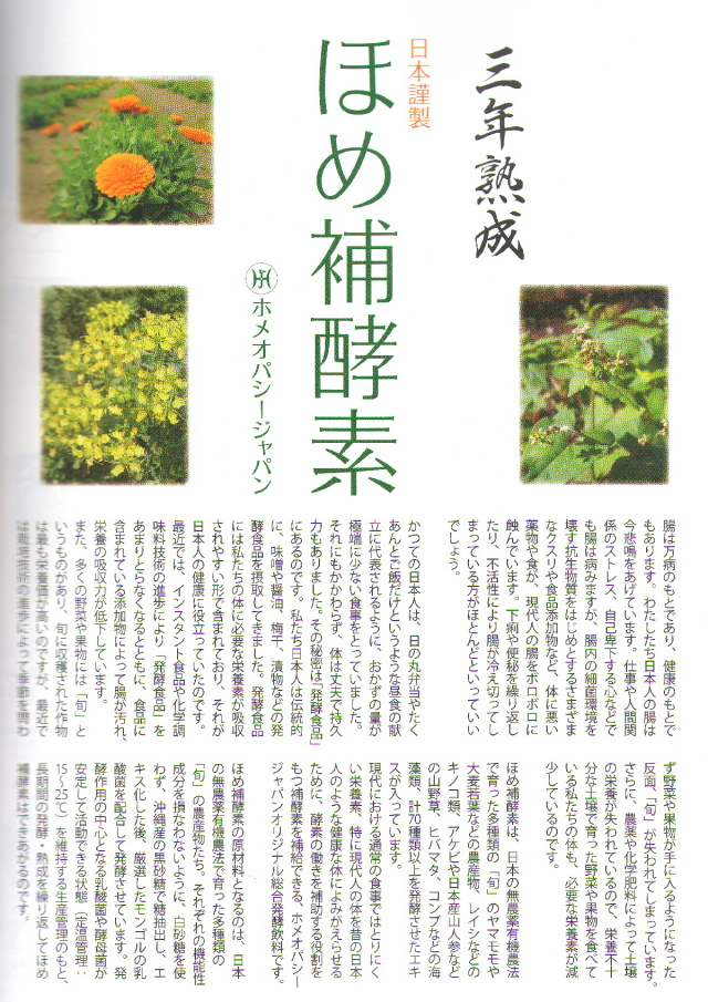 Veggyほめ補酵素掲載記事1