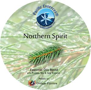 Northern Spirit 11プレシャスジュエルズ/パシフィックエッセンス