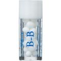 サポートB-B / サポートビービー【新バース35】(小ビン)