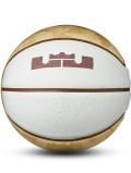 BL056 Nike LeBron Playground Basketball ナイキ レブロン バスケットボール 7号球 白ブラウン