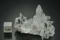 鳥形水晶(日本式三連双晶)