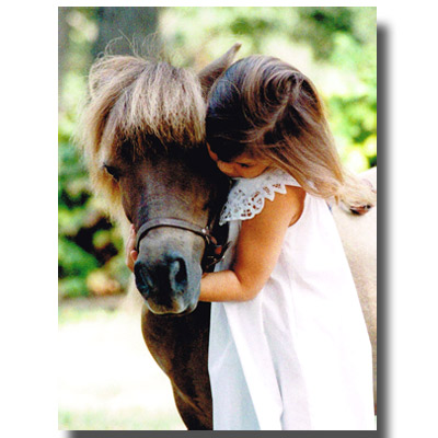 グリーティングカード「Hugs」お馬ちゃん大好き!
