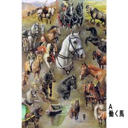 英国乗馬協会クリスマスチャリティカード3種