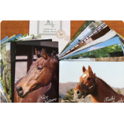 <引退馬協会>20周年記念 ポストカード(21枚組)