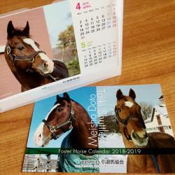 <引退馬協会>(数量限定)メイショウドトウ・タイキシャトル 卓上カレンダー 2018(4月開始)