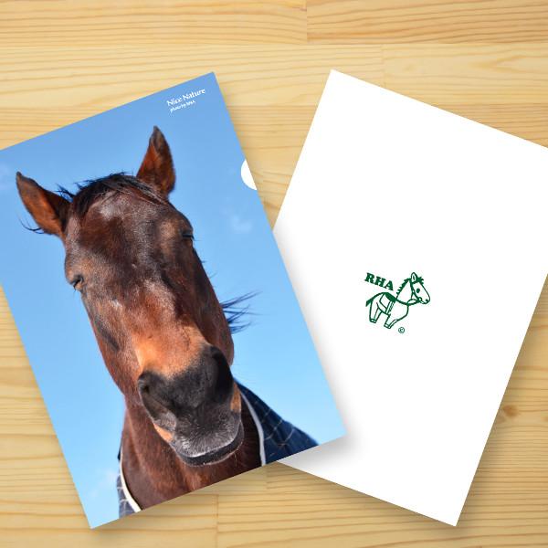 【入荷待ち受付中】<引退馬協会>クリアファイル「ナイスネイチャ」